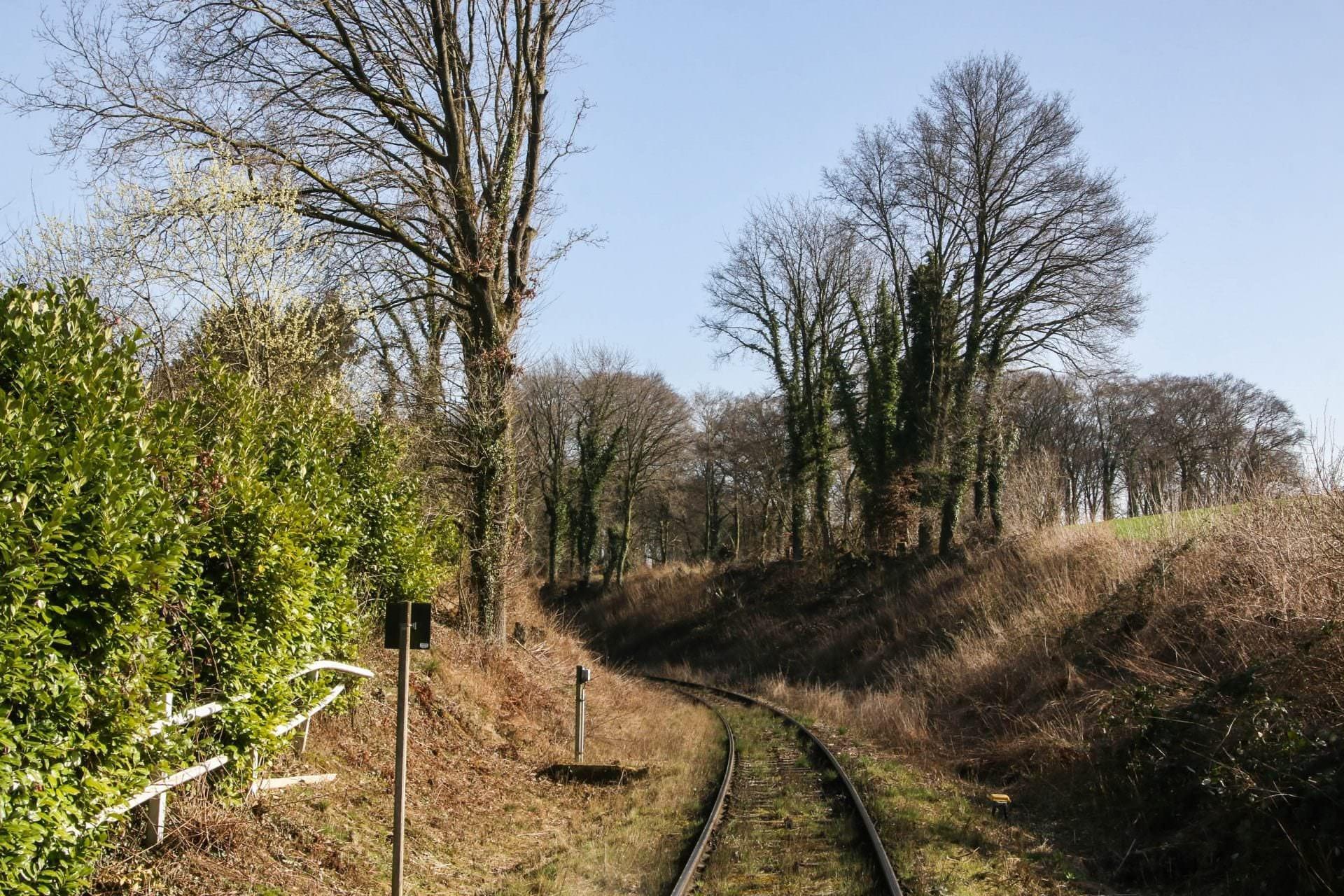Strecke vom Bahnhof Flandersbach zum Kalkwerk Rohdenhaus